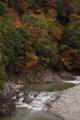 京都新聞写真コンテスト 渓谷