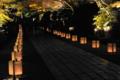 京都新聞写真コンテスト 最終のライトアップ