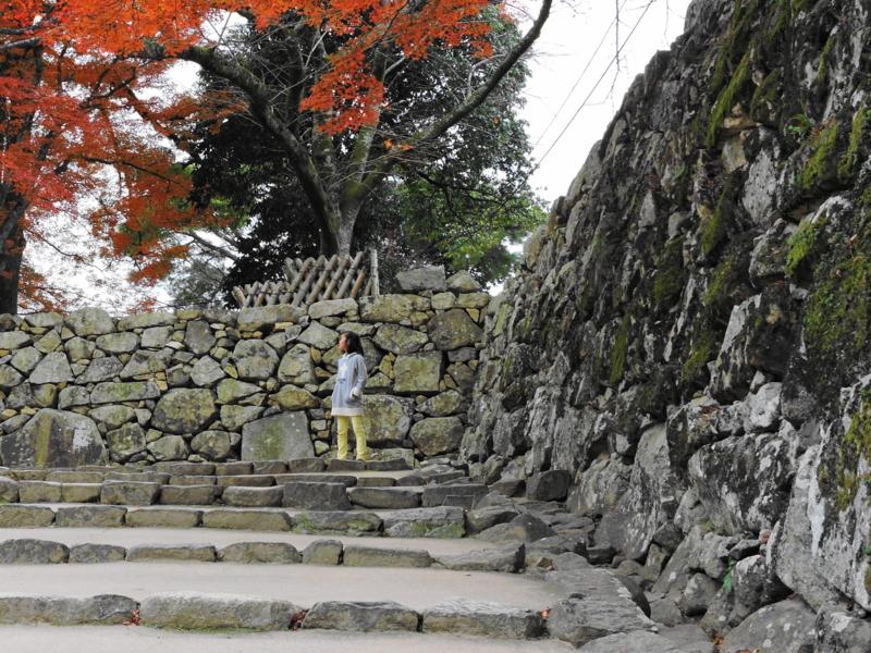 京都新聞写真コンテスト もうすぐ天守閣