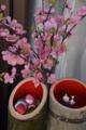 京都新聞写真コンテスト かぐや雛