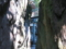 京都新聞写真コンテスト 神のお導き