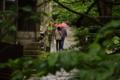 京都新聞写真コンテスト 雨の石畳
