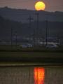 京都新聞写真コンテスト 灼熱の後
