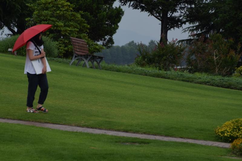 京都新聞写真コンテスト赤い傘の女