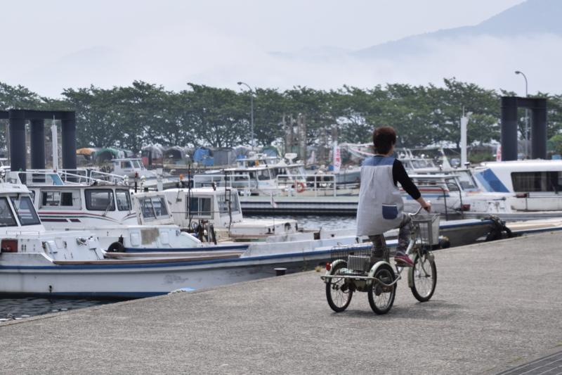 京都新聞写真コンテスト 港のおばさん