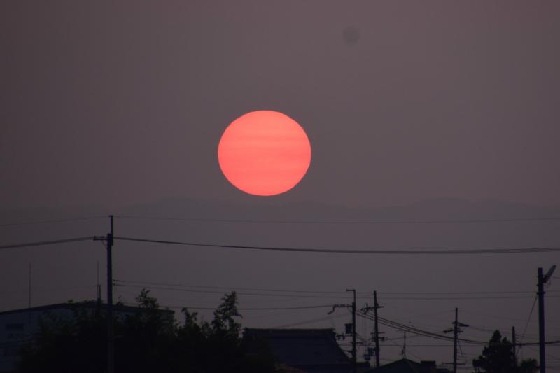 京都新聞写真コンテスト 真っ赤に燃ゆる