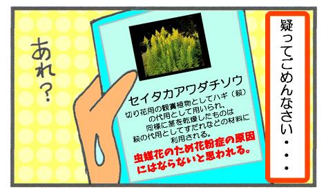 f:id:toshigoto:20161024210525j:plain