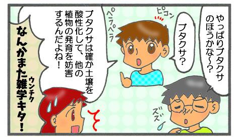 f:id:toshigoto:20161024210529j:plain