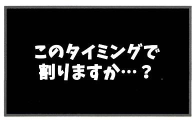 f:id:toshigoto:20161103203632j:plain
