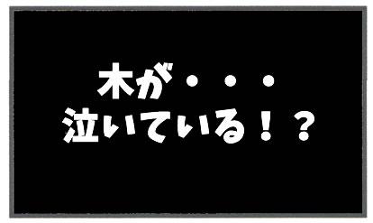 f:id:toshigoto:20170120112347j:plain
