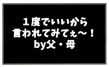 f:id:toshigoto:20170128190142j:plain