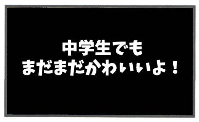 f:id:toshigoto:20170222172831j:plain