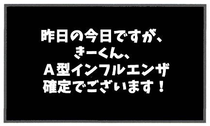 f:id:toshigoto:20170301165047j:plain