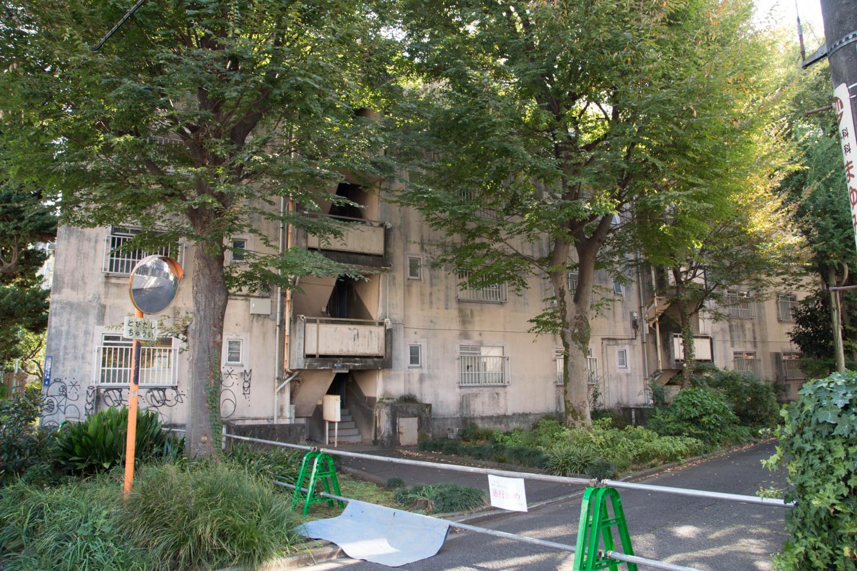 f:id:toshiharu-hirai:20170202015343j:plain