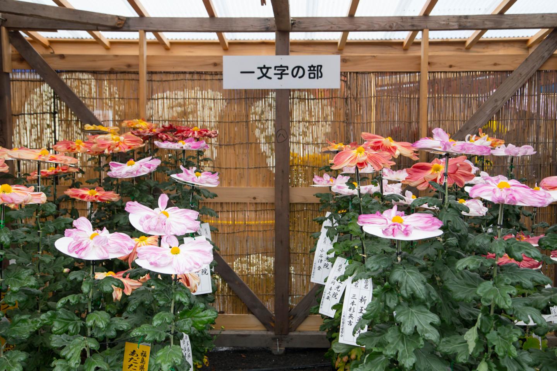 f:id:toshiharu-hirai:20170207023854j:plain