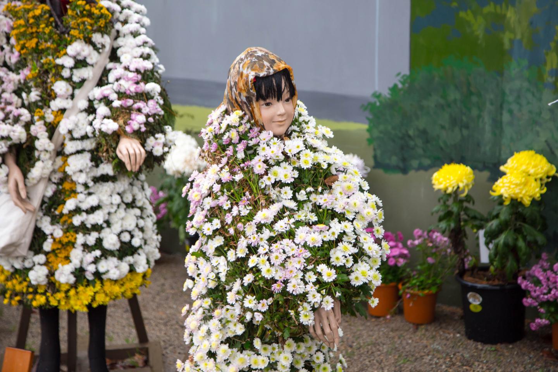 f:id:toshiharu-hirai:20170208211450j:plain