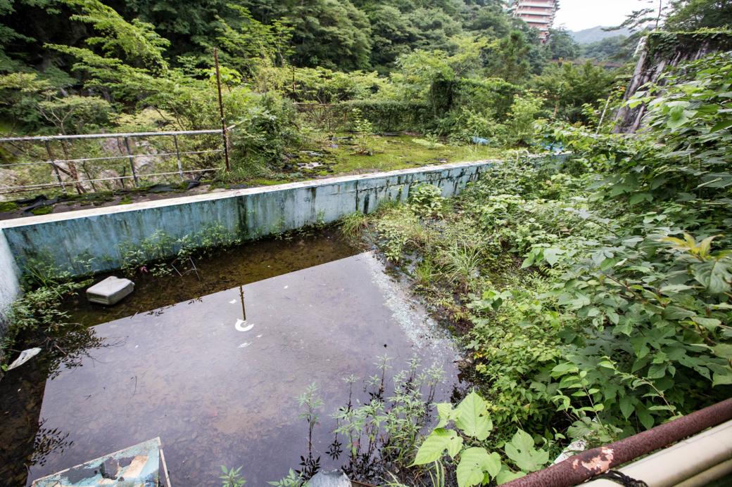 庭園のようなプール
