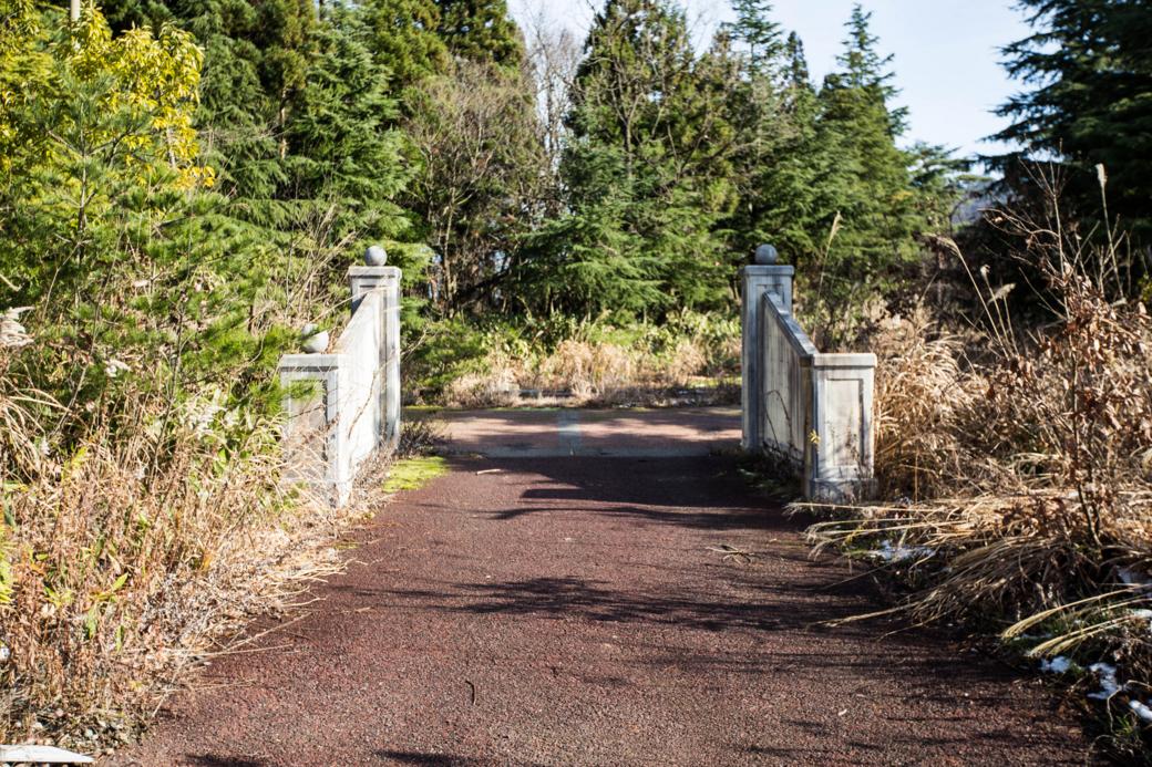 先へと続く橋