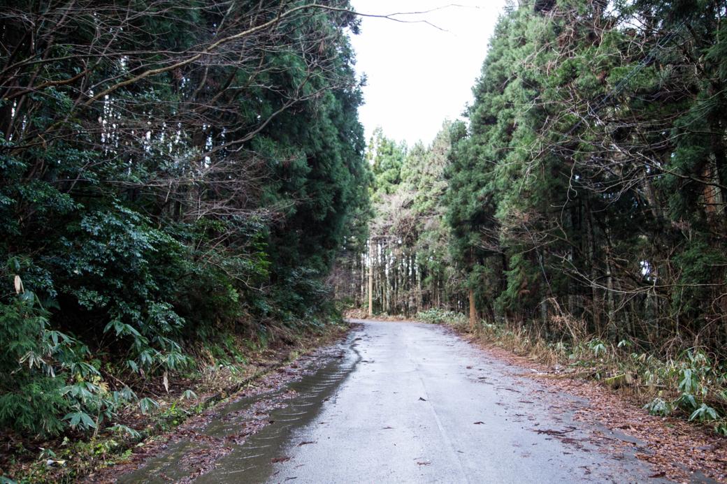 ロシア村に続く山道