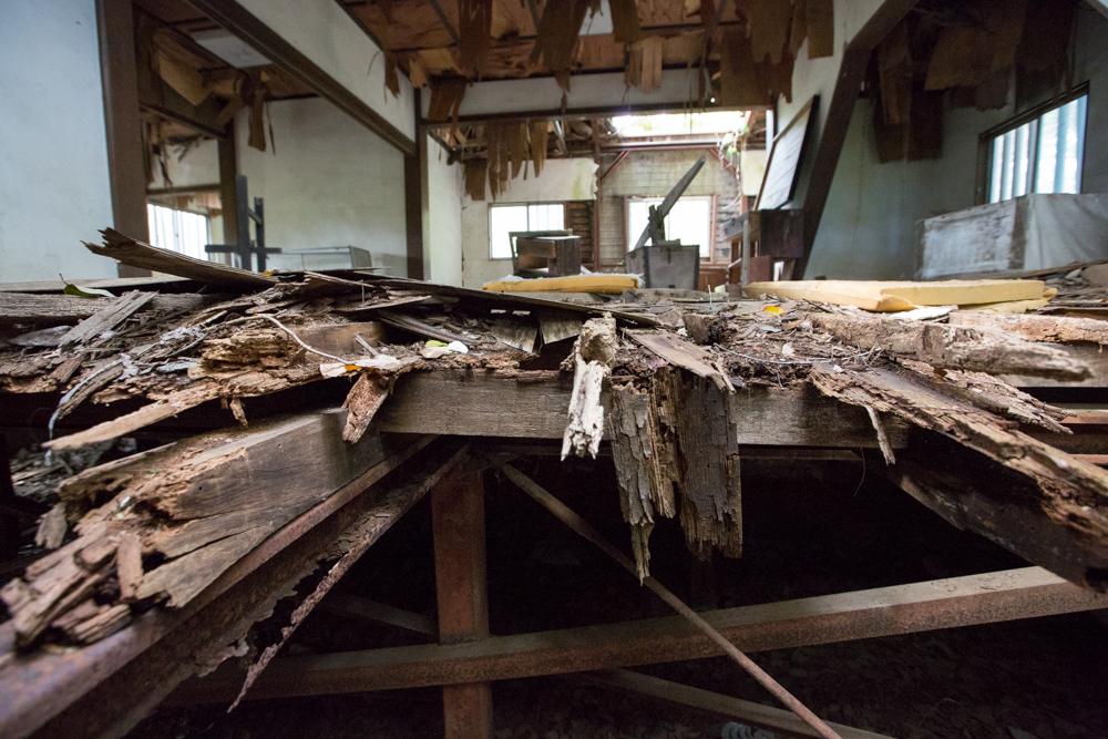 床に使われていた木材の断面