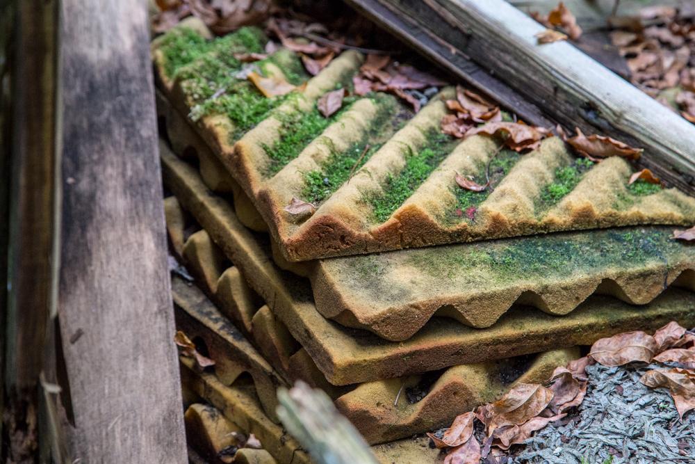 苔が生えてしまったベッドの残骸