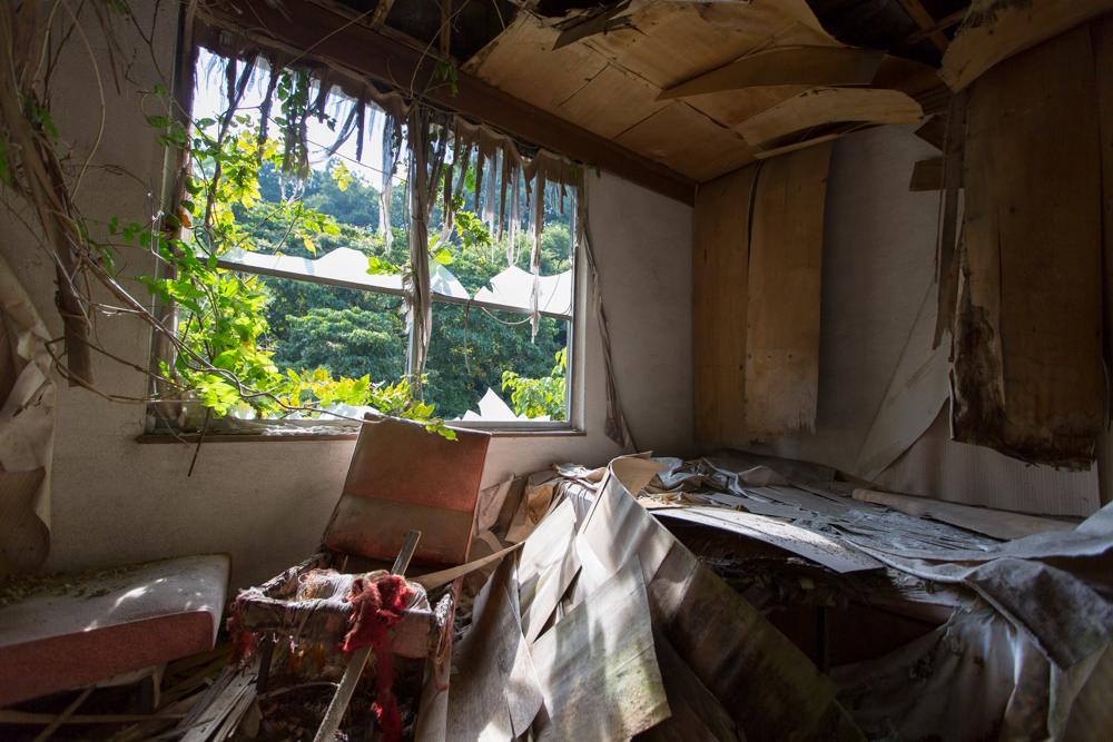 窓が割れ草が絡みついたゲストルーム