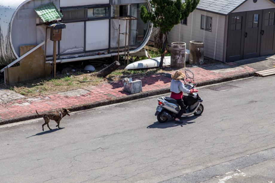 原動付きバイクで犬の散歩をする近隣住人