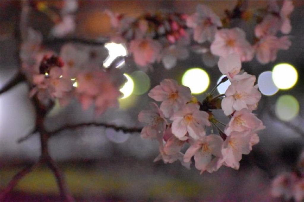 f:id:toshiharu_toukairin:20190525071639j:image