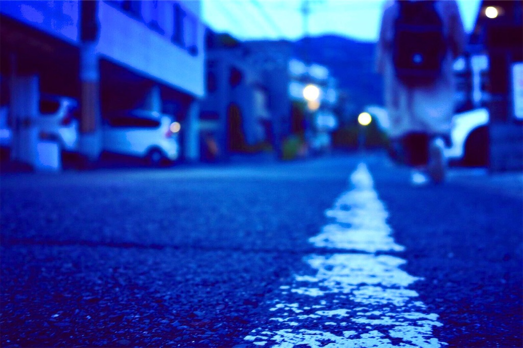 f:id:toshiharu_toukairin:20190601065920j:image