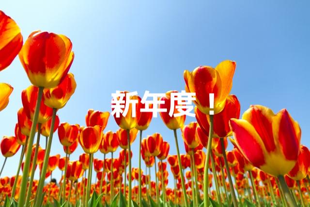 f:id:toshihiro25:20180402115642p:plain