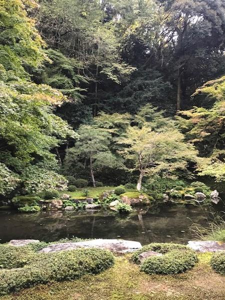 f:id:toshii2008:20181029141711j:image
