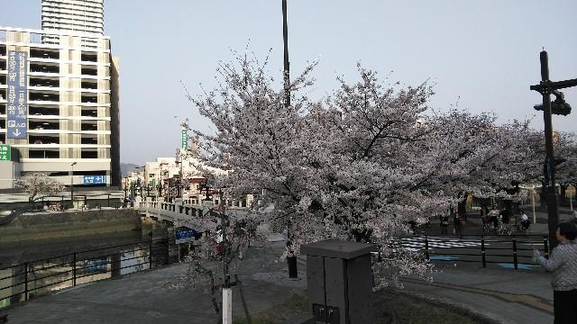 f:id:toshikaga19710329:20180329212837j:image