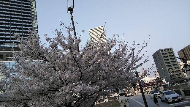 f:id:toshikaga19710329:20180329212941j:image
