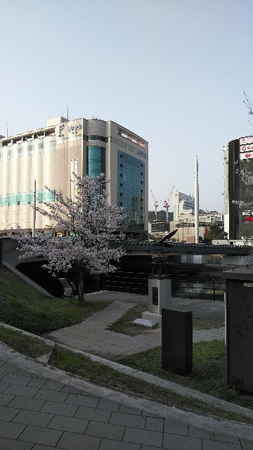 f:id:toshikaga19710329:20180329213003j:image