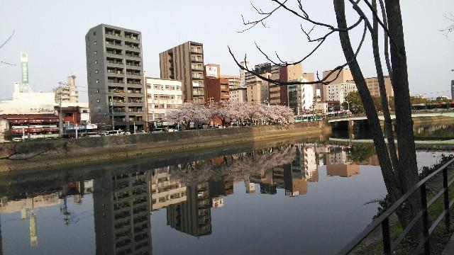 f:id:toshikaga19710329:20180329213029j:image