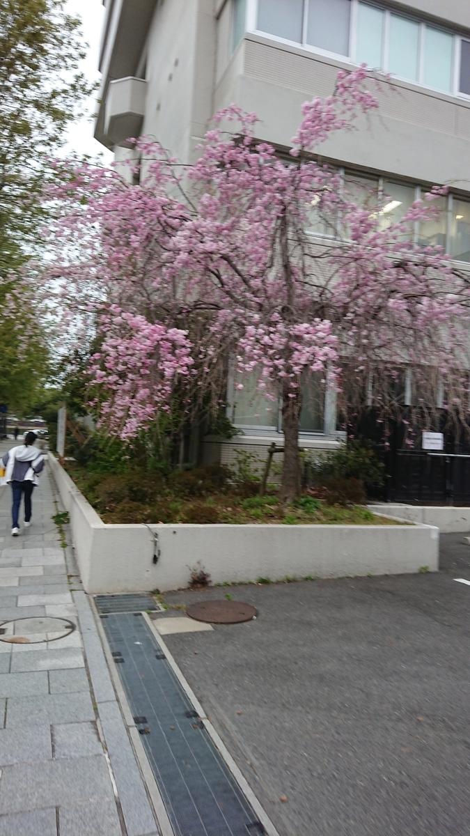 f:id:toshikaga19710329:20190408190438j:plain