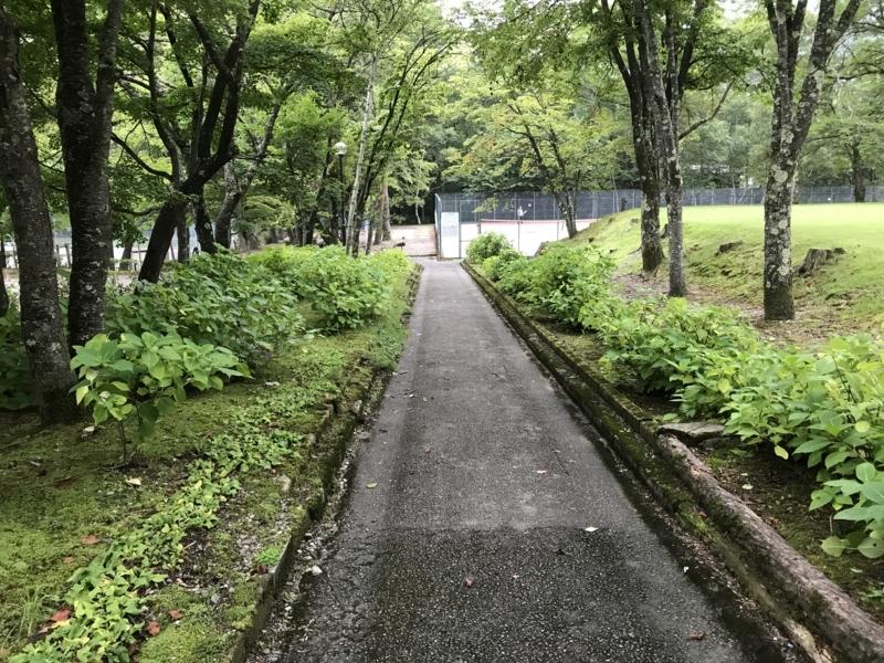 f:id:toshiki5911:20170818210230j:plain