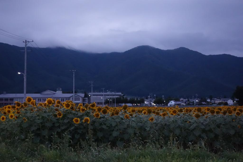 f:id:toshikida:20160621162225j:plain
