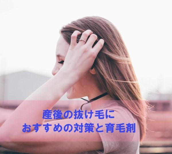 f:id:toshimaru104:20190813021411j:plain