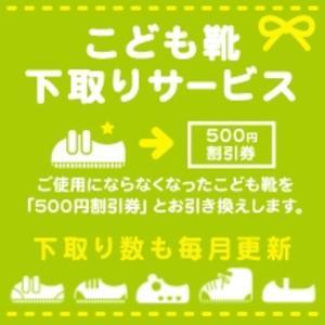 f:id:toshinan:20170613232248j:plain