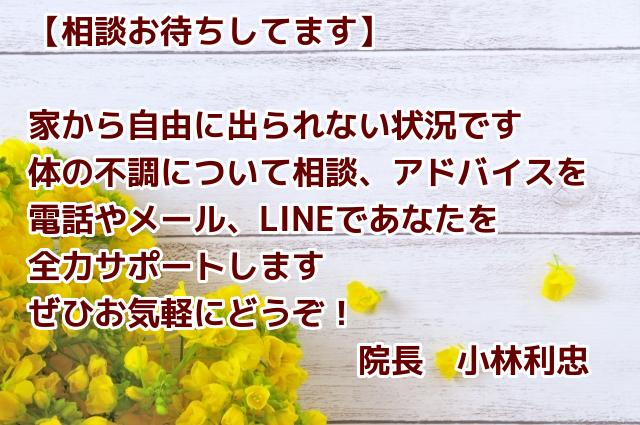 f:id:toshitada-kobayashi:20200408103528j:plain