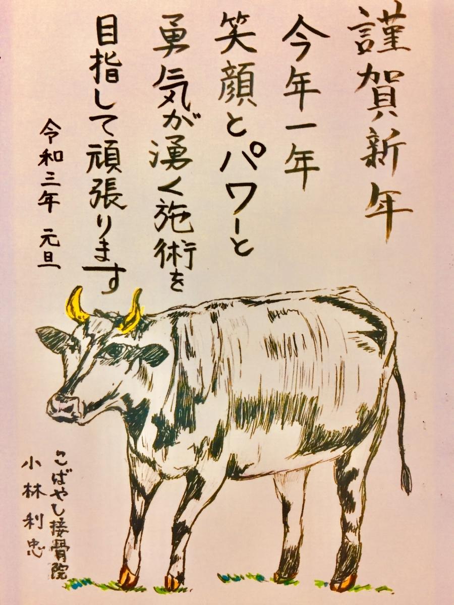 f:id:toshitada-kobayashi:20210101083151j:plain