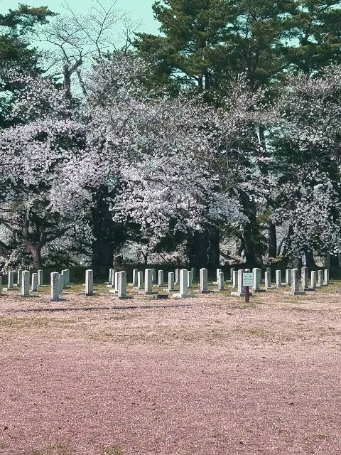 f:id:toshiya4952:20180505182121j:image