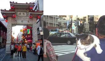 f:id:toshobu:20051001233614j:image