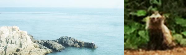 f:id:toshobu:20130813164735j:image