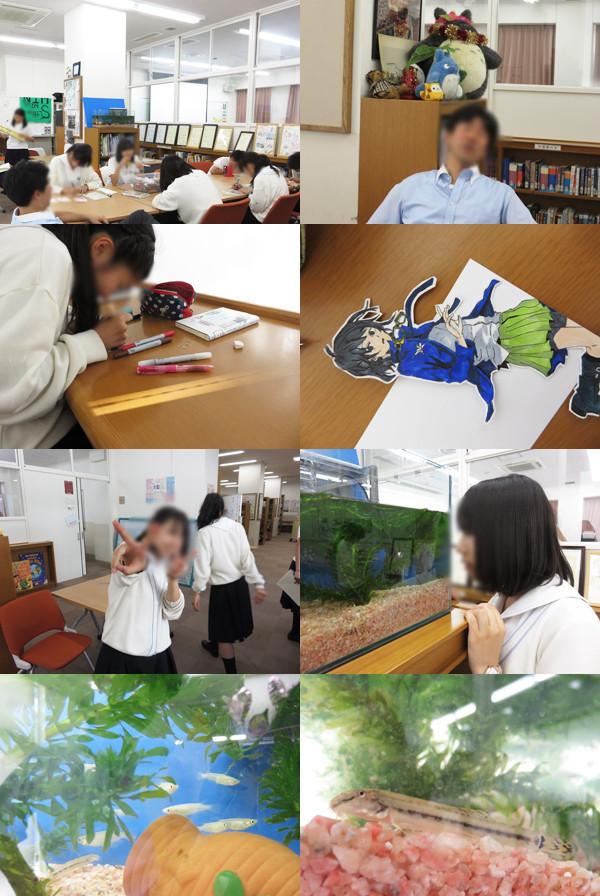 f:id:toshobu:20150606184645j:image