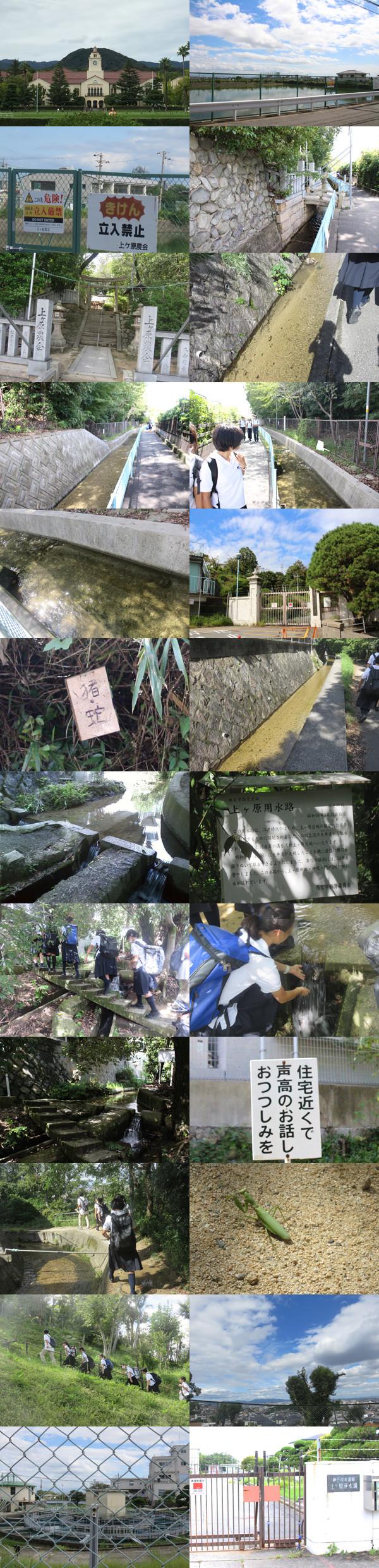 f:id:toshobu:20180924174127j:image