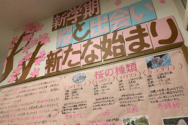 f:id:toshobu:20200414200235j:image