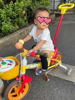 f:id:tosigomamakome:20210726005039j:plain