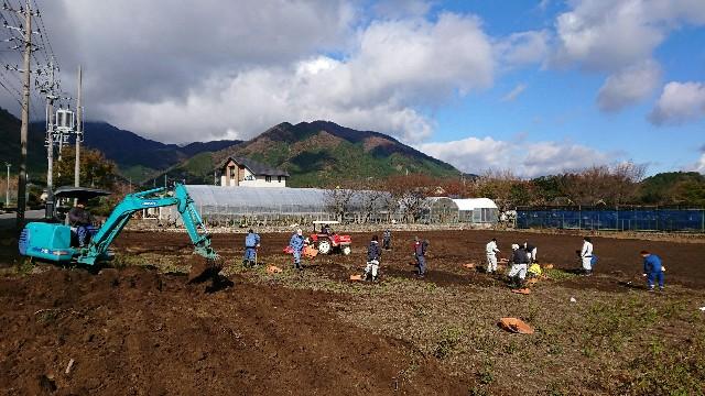 f:id:tosshii-plants:20171119202036j:image